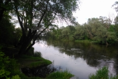 Wodowskaz rzeka Bug