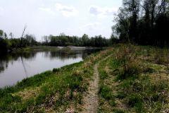 Spływy kajakowe rzeką Bug