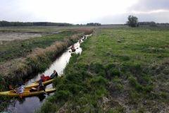 Kajaki na rzece Włodawce