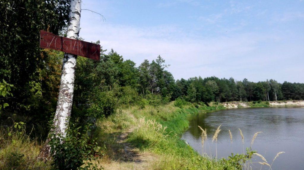 Canoe Trail Bug – Krzna