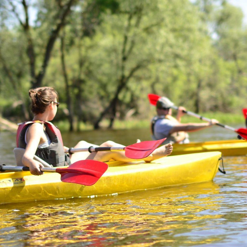 kayak-by-bug